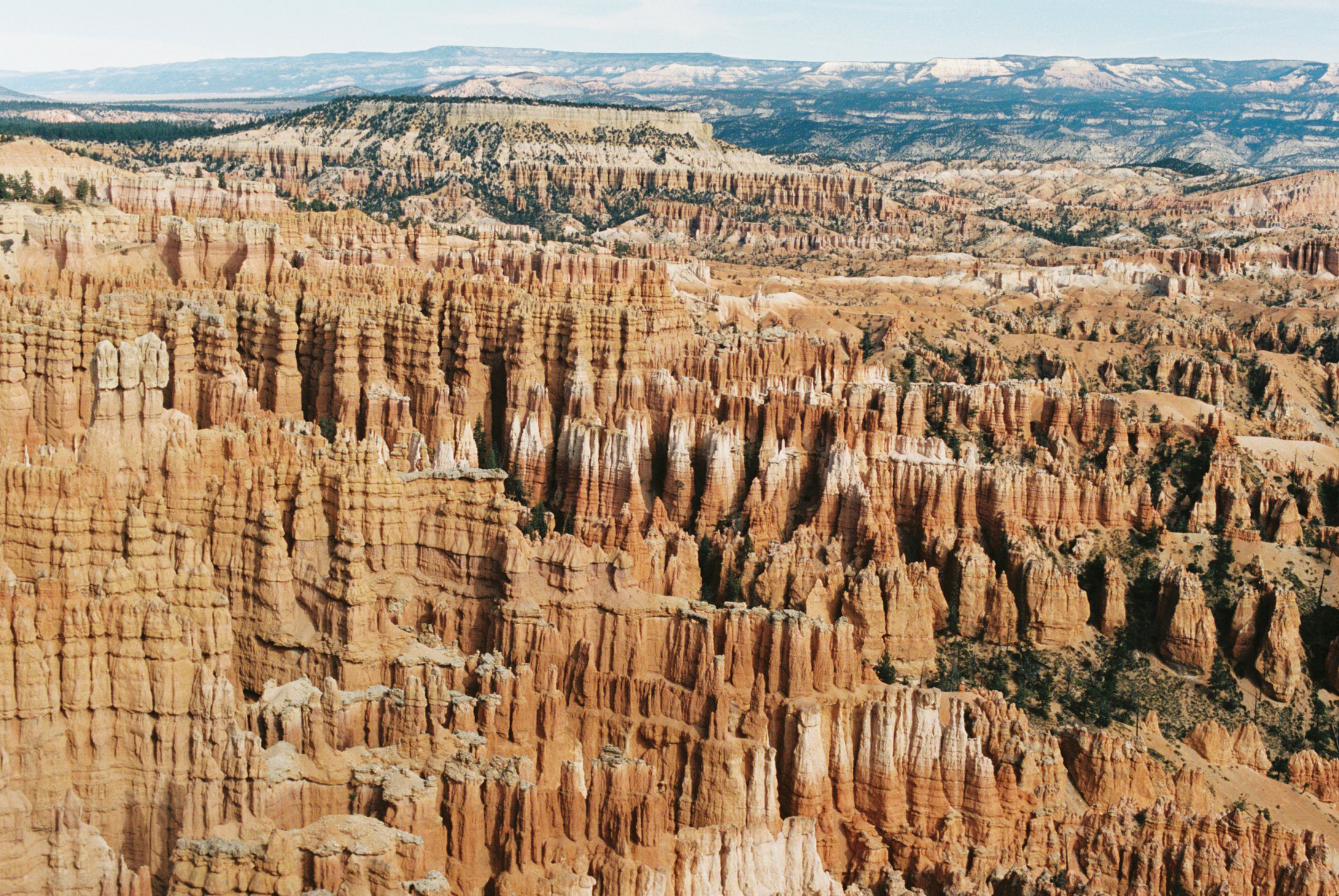 Bryce National Canyon by Shannon Skloss Photography